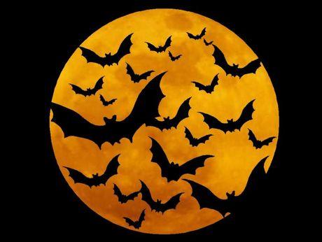 Nhung truyen thuyet muon doi bi an ve Halloween - Anh 5