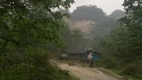 'Ai thau tom dat nong lam truong': Nhung chuyen bat thuong - Anh 1