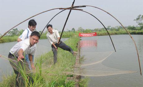 Ho tro kip thoi cho nong dan - Anh 1