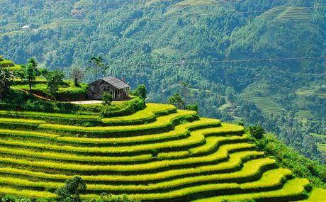 Ha Giang: Lung tung xay dung hop tac xa - Anh 1