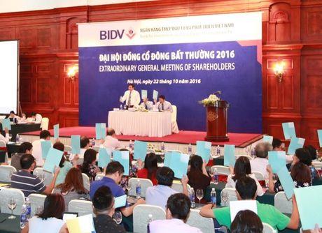 BIDV bat ngo tra co tuc 2015 bang tien mat - Anh 1