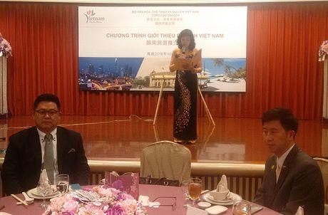 Hoi nghi hop tac du lich Viet Nam – Dai Loan va cac hoat dong xuc tien du lich Viet Nam tai Dai Loan - Anh 2