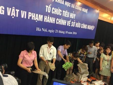 Hoi do khi tieu huy o Bo KH-CN: Bo truong noi thang - Anh 1