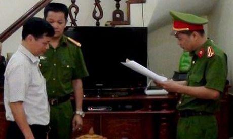 Vi sao nguyen giam doc xo so Ha Giang bi bat? - Anh 1