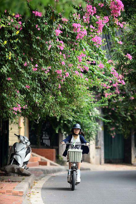 Nhung gian hoa giay khien Ha Noi tro nen tho hon - Anh 9