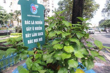 Pho phuong Sai Gon khoac mau ao moi bang nhung chau hoa dang yeu - Anh 5
