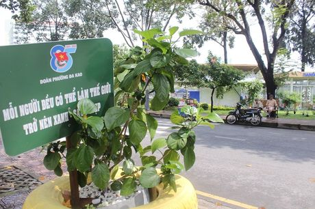 Pho phuong Sai Gon khoac mau ao moi bang nhung chau hoa dang yeu - Anh 6