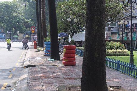 Pho phuong Sai Gon khoac mau ao moi bang nhung chau hoa dang yeu - Anh 7