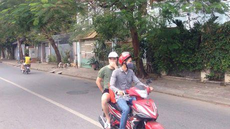 Ha Noi: Ho Van Quan 'than tho', dan non nao, choang vang - Anh 2