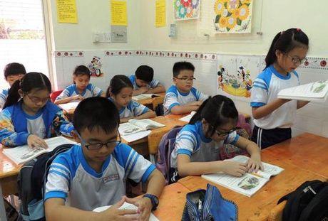 TP. HCM chinh thuc tang cuong thanh, kiem tra day them, hoc them - Anh 1