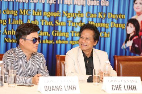 Quang Linh: 'Toi khong so lay vo!' - Anh 3