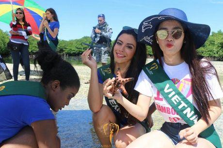Nam Em dat Hoa hau Anh tai Miss Earth 2016 - Anh 1