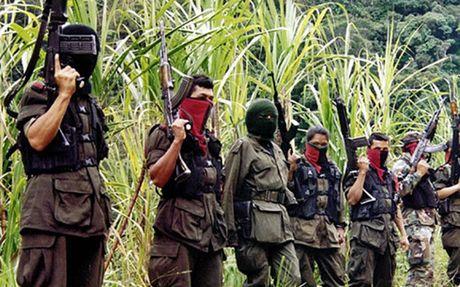 Colombia se dam phan voi nhom Quan doi giai phong quoc gia - Anh 1