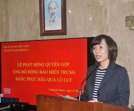 Cong dong nguoi Viet o Mexico quyen gop ung ho dong bao mien Trung - Anh 1