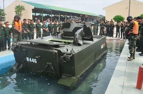Viet Nam co the cai tien M113 dung cho hai quan danh bo? - Anh 1