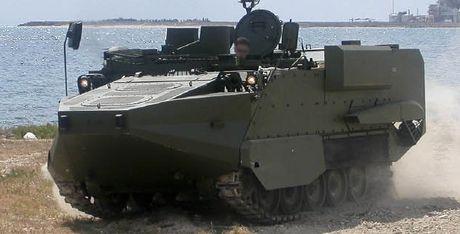 Viet Nam co the cai tien M113 dung cho hai quan danh bo? - Anh 4