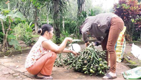 Quang Tri: 'Mua 1 ban 3', nha nha buon cau - Anh 1