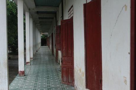 Co tro truong TH Dien Quang 7 nam hoc trong mui thuoc sau nong nac - Anh 3