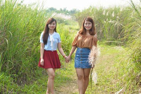 Canh dong co lau tho mong giua long Ha Noi - Anh 2