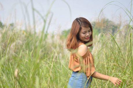 Canh dong co lau tho mong giua long Ha Noi - Anh 4