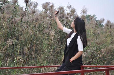 Canh dong co lau tho mong giua long Ha Noi - Anh 6