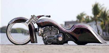 Nhung mau xe Harley-Davidson do doc dao tren the gioi - Anh 1
