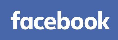 Da Nang han che can bo su dung facebook trong gio lam viec - Anh 1