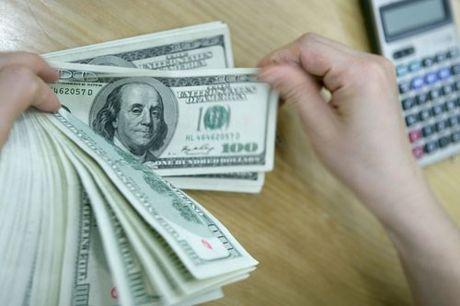9 thang tra no nuoc ngoai hon 1,6 ti USD - Anh 1