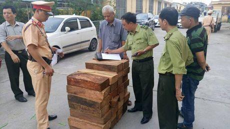 Xe khach Nam Ga cho go lau - Anh 1