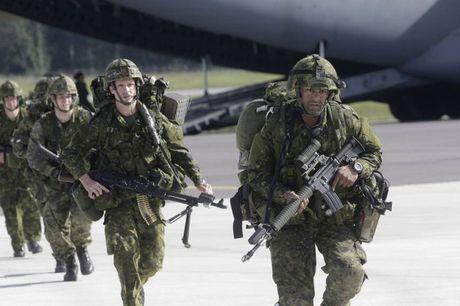 NATO se huy dong luc luong quan doi hung hau nhat toi sat nach Nga - Anh 1