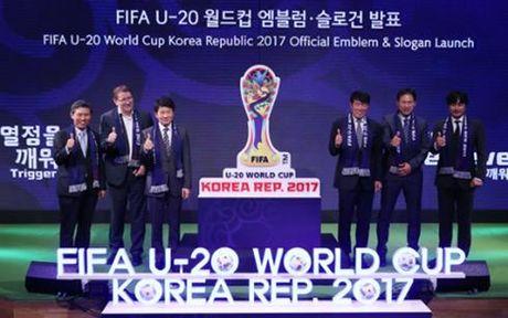 The thao 24h: U19 Viet Nam duoc BTC FIFA U20 World Cup 2017 chuc mung - Anh 1