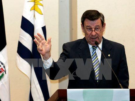 Uruguay: Dam phan FTA voi Trung Quoc phu hop cam ket Mercosur - Anh 1