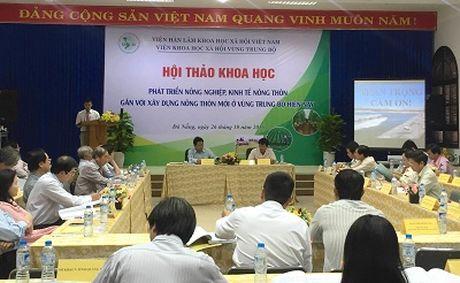 Trung Bo: Huong toi nen nong nghiep sinh thai - Anh 1