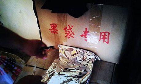 Bi mat kinh hoang cua cac nha trong tao Trung Quoc - Anh 7