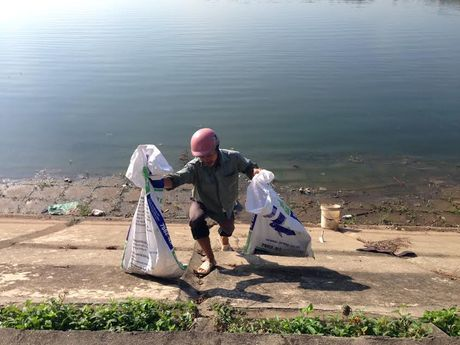 Nguoi dan thi nhau vot xac ca chet tai ho Linh Dam - Anh 7