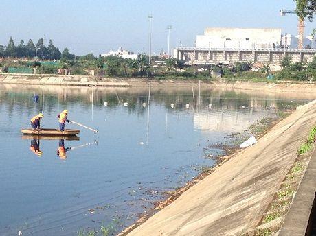 Ha Noi: Hang tan ca to chet noi o ho Linh Dam - Anh 1