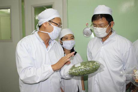 Cong nghe bao quan nong san moi cua Viet Nam - Anh 1