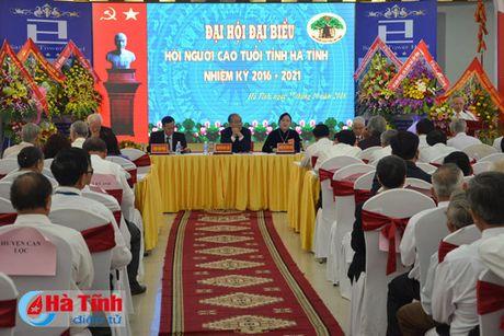 Dai hoi Hoi Nguoi cao tuoi tinh Ha Tinh nhiem ky 2016-2021 - Anh 1