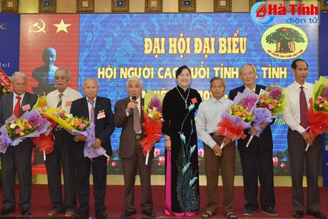 Dai hoi Hoi Nguoi cao tuoi tinh Ha Tinh nhiem ky 2016-2021 - Anh 6