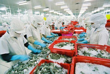 Thuy san Viet xuat ngoai du bao dat 7 ty USD trong nam nay - Anh 1