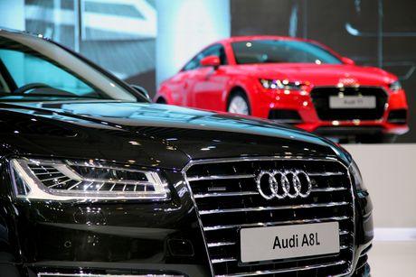 Diem mat 12 mau xe duoc Audi mang den VIMS 2016 - Anh 9