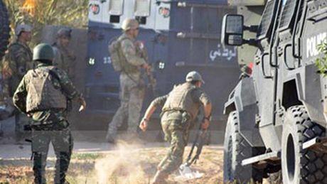 Tunisia dap tan mot am muu khung bo lon - Anh 1