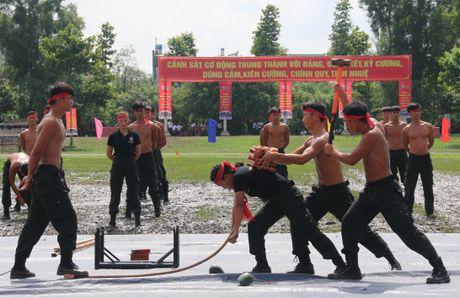 Trung doan CSCD Tay Nam Bo don nhan Huan chuong bao ve To quoc hang Ba - Anh 14