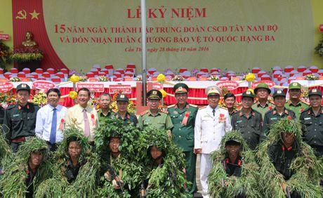 Trung doan CSCD Tay Nam Bo don nhan Huan chuong bao ve To quoc hang Ba - Anh 6
