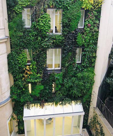 Du khach thich thu voi nhung khu vuon trong pho o Paris - Anh 5