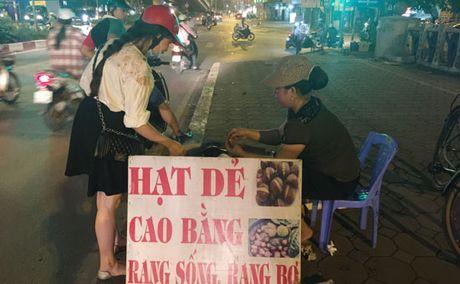 Giat minh hat de Trung Quoc tran ve Ha Noi - Anh 1