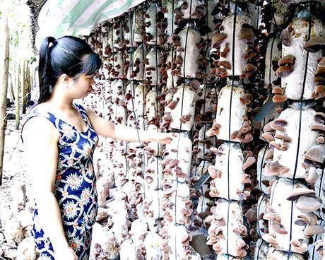 NTM Tan Thanh: Cach lam moi cho thu nhap cao - Anh 1
