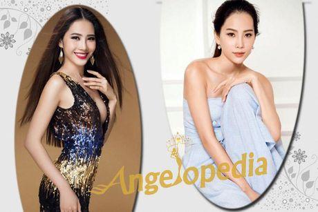 Nhung doi thu dang gom cua Nam Em tai HH Trai dat - Anh 2
