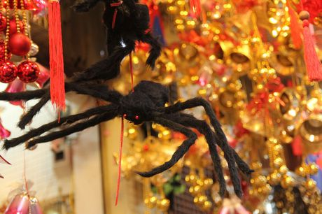 "Bi ngo Halloween, mat na ""ma quy"" len ngoi tren pho Hang Ma - Anh 14"