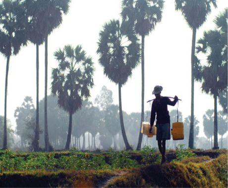 Nghe lam duong thot not cua dong bao Khmer - Anh 1
